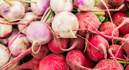 close up of bright red, pink and white radishes at a farmer's market