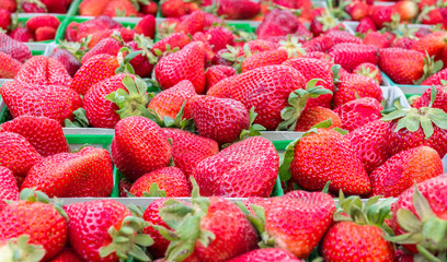 full frame close up of ripe red strawberries with green leaves at a farmer's market