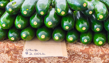 close up of rows of ripe green squash with a simple cardboard misspelled sign at a farmer's market