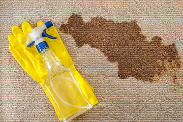 Cleaning supplies and carpet sanitizing concept with a pair of yellow rubber gloves and a bottle of carpet cleaner with a spray head next to a dried big brown coffee stain