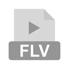 FLV, file, document