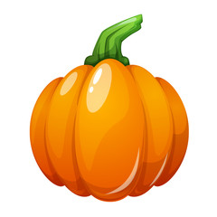 Cartoon pumpkin illustration on the white background. Vector eps 10