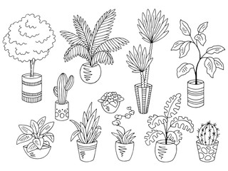 Home plants flower graphic black white isolated sketch set illustration vector