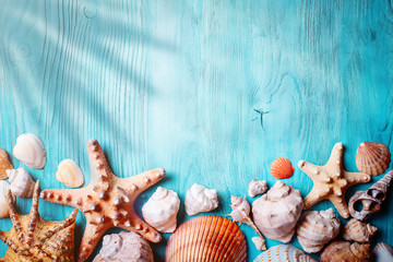 Summer time concept with seashells and starfish on blue wooden boards. Rest on the beach. Background with copy space