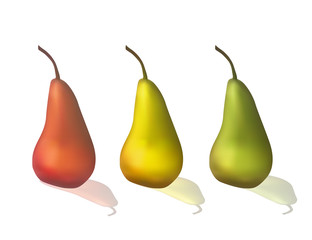 Set of colorful pears. Sweet fruit. Vector illustration. Dietary food