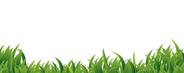 Green Grass border frame on white background