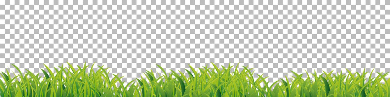 Green Grass border frame on checkered background