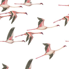 Watercolor painting seamless pattern with flying flamingos