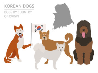 Dogs by country of origin. Korean dog breeds. Infographic template