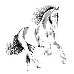 Silhouette of a running horse. Vector Image