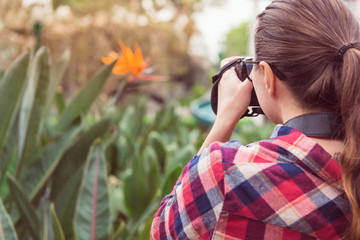 Girl in plaid shirt takes picture of flower in park, rear view, toned. Photograph, naturalist, study of nature theme.