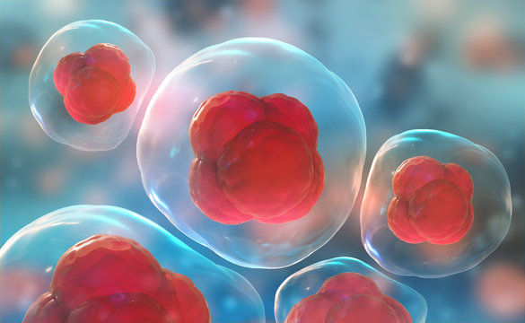 Cells under a microscope. Research of stem cells. Cellular Therapy. Cell division. 3d illustration on a light background