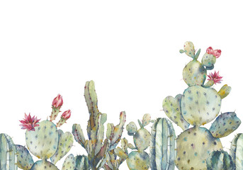 Watercolor cactus seamless pattern. Hand drawn repeating ornament with desert plants on white background. Flowering cacti banner design