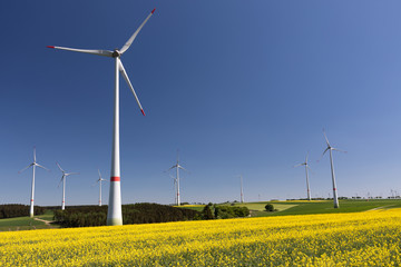 Windpark mit Rapsfeld