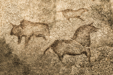 An image of ancient animals on the wall of the cave. archeology. ancient history. drawings of an ancient person