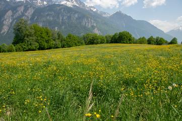 Plateau de Vérossaz