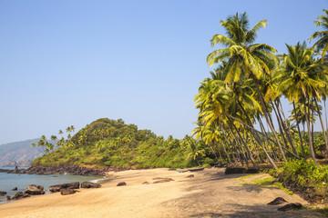 India, Goa, Cola beach
