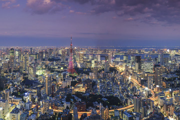 Aerial view of illuminated cityscape and Tokyo Tower at night