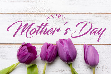 A group of purple tulips on a white background with copy space with mother's day greeting