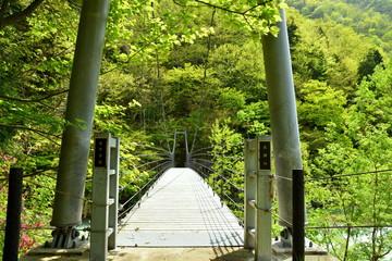 笹平吊橋 高瀬川