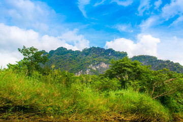 Tropical landscape of a jungle in Thailand