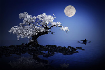 Mystical tree under the moonlight