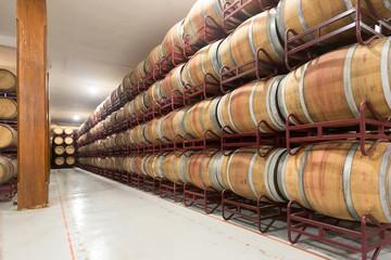 barrels in  winery factory