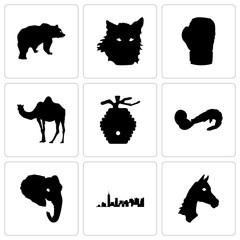 Set Of 9 simple editable icons such as horse face, , elephant head