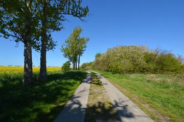 Hochuferweg Juliusruh, Drewoldke, Vitt