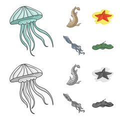 Jellyfish, squid and other species.Sea animals set collection icons in cartoon,monochrome style vector symbol stock illustration web.