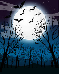 Scary Dark Night Forest Background