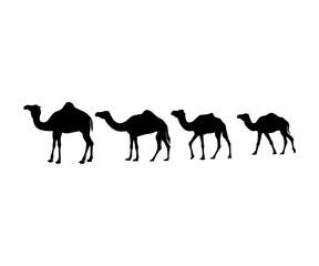 camel silhouette vector icon logo design set