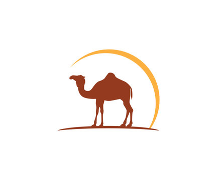 camel and sun vector icon logo design