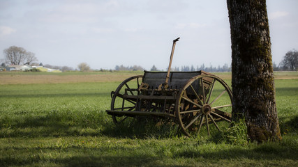 Antique wooden grass seeder resting on lawn under the shade of a tree with a pale blue sky