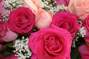 Dark and Light Pink Rose Bouquet with Babies Breath