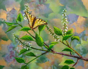 Swallowtail Butterfly on the Chokecherry Tree