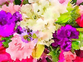 very nice assortment of Flowers