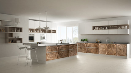 White modern minimalistic kitchen, with classic wood fittings, panoramic window, luxury interior design