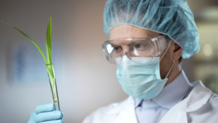 Biologist analyzing organic plant growth, pesticides and nitrates effect, hybrid