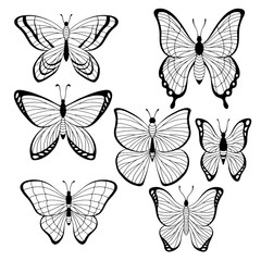 Butterfly set graphic black white isolated sketch illustration vector