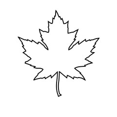 icon of a maple leaf. raster illustration