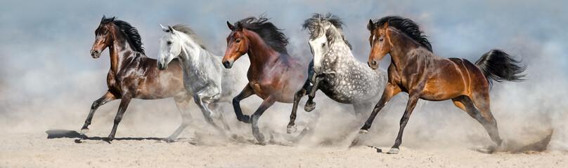 Horses run fast in sand against dramatic sky Wall mural