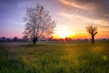 Countryside Landscape Sunset