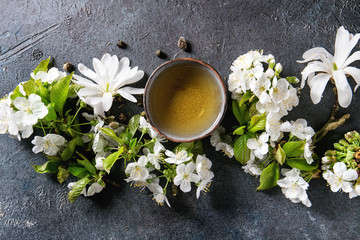 Traditional ceramic cup of hot green tea with spring flowers white magnolia and cherry blooming branches over dark blue texture background. Top view, copy space.