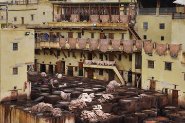 Drying the cow's skins on the yellow walls of tannery and vats for leather dyeing, Fes, Morocco.