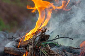 Closeup photo of outdoor bonfire with smoke