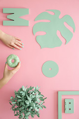 Mint on pink background