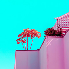 Tropical pink abstract building