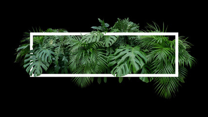 Tropical leaves foliage jungle plant bush nature backdrop with white frame on black background. Wall mural