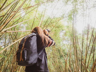 summer and nature photographer concept from woman adventure and travel with take photo by her camera in the forest